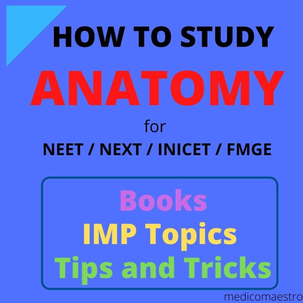 HOw to study anatomy